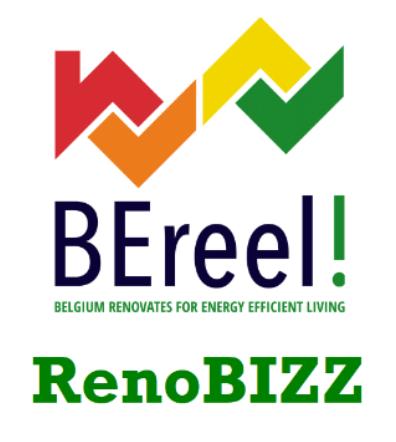 Be-Reel! Brainstormsessie RenoBIZZ